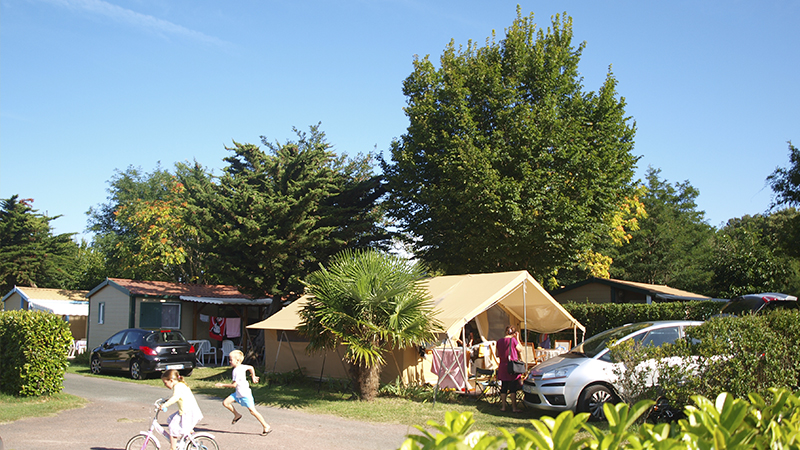 Camping Ile D'Oleron Tente Safari au Camping La Brandei 001